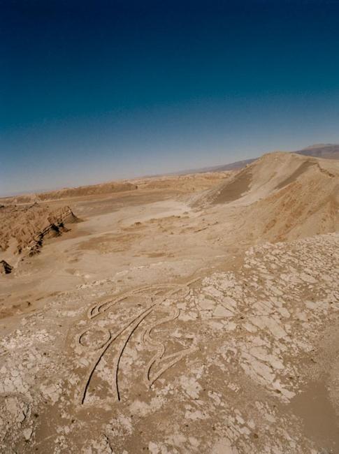 Ritmos de Vida. Llano de la Paciencia, desierto de Atacama, Chile.