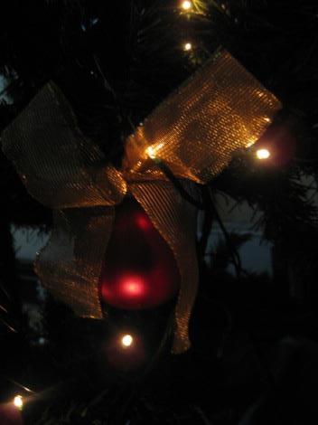 Adorno navideño en árbol. Foto: Ximena Jordán.