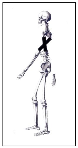 Caminante-J.M. Calleja